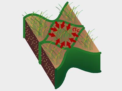 Geocelle per il controllo dell'erosione Tenax Tenweb