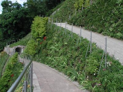 Terre rinforzate per il landscaping - Sistema Tenax Rivel