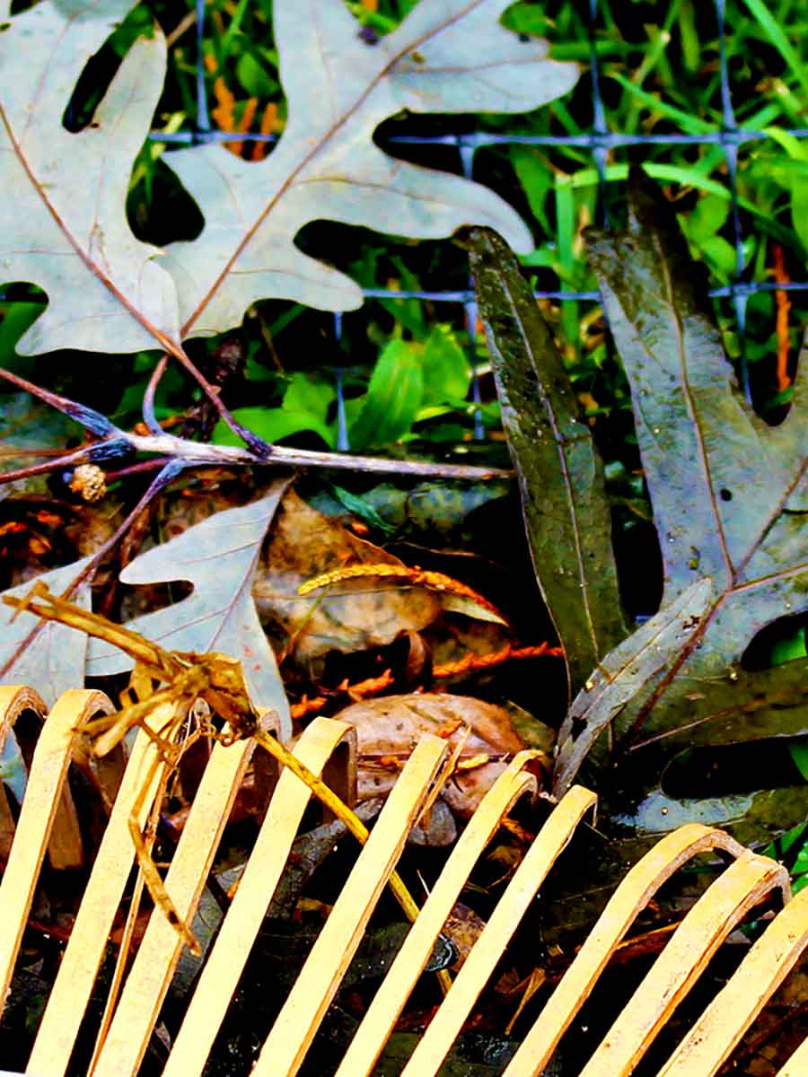 Plastic mesh for seasonal bird protection, leaf collection, pond protection