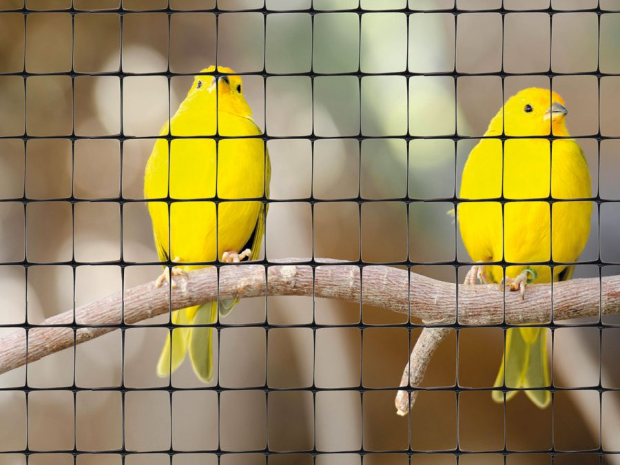 tenax plastic fence for bird cages