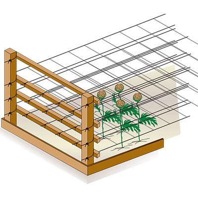 Installazione rete per coltivazione fiori - fase 4