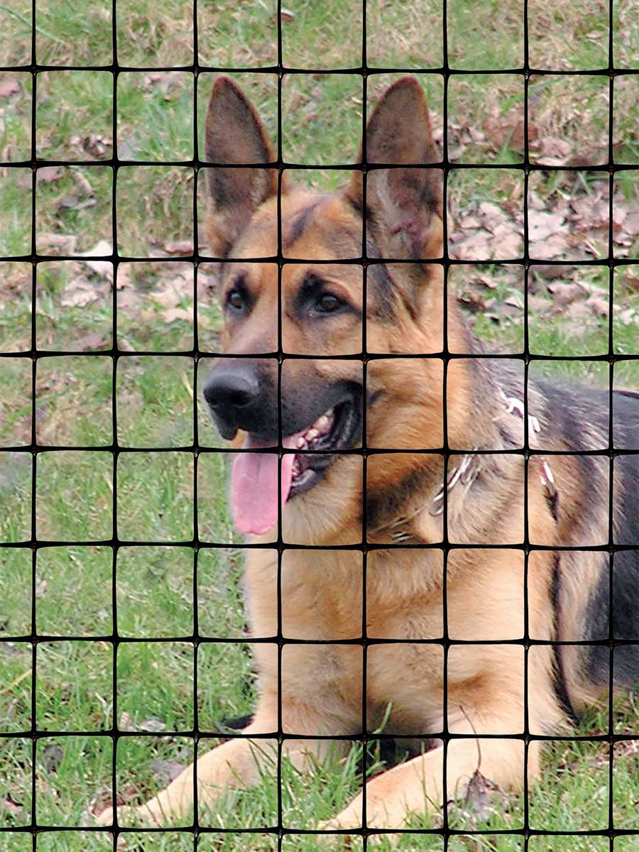 plastic fence for pets, dogs