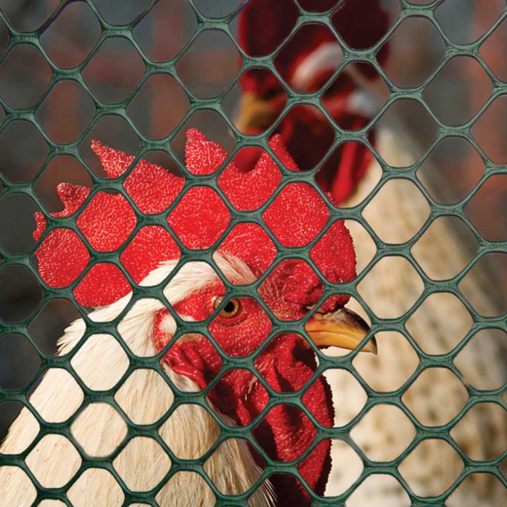 Metal Roll Wire Mesh Chicken Run Fencing Crop Protection Net Garden Border Fence