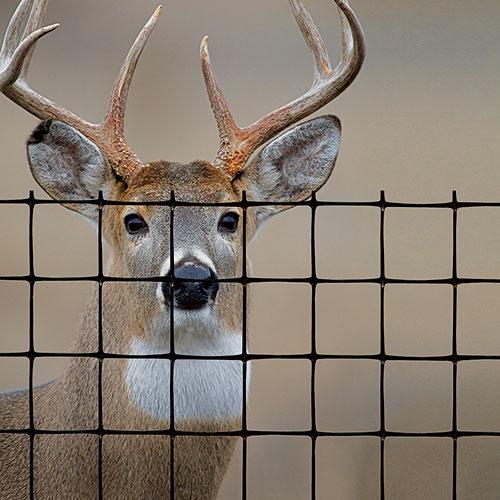 Tenax deer fence premium